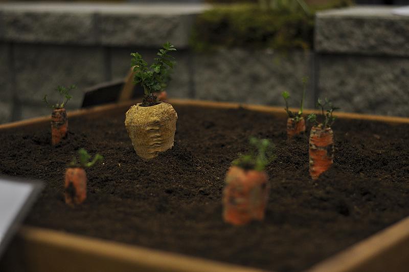 Trädgårdsmässan 2012