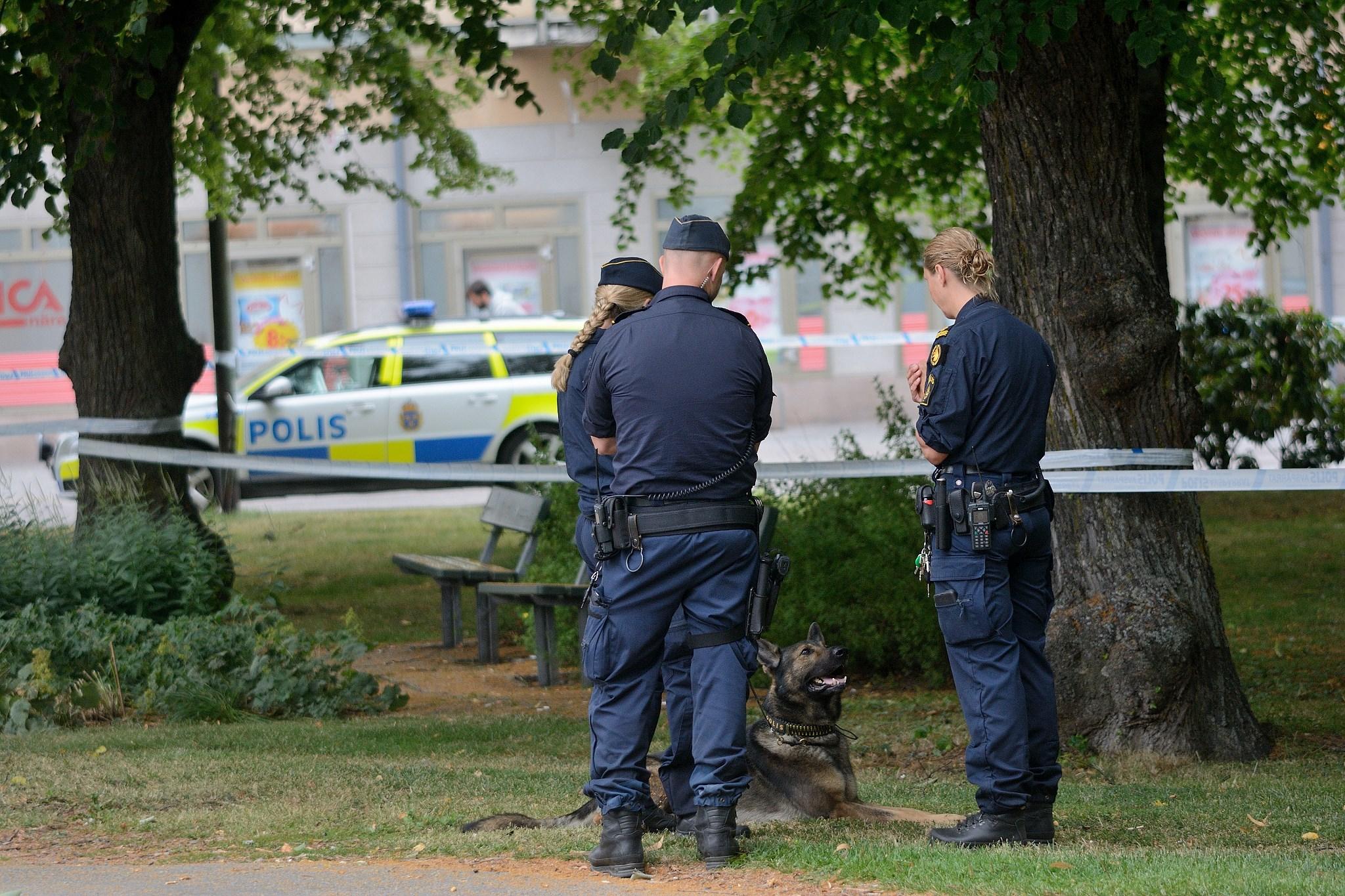 Nioåring överfallen i Oskarsparken